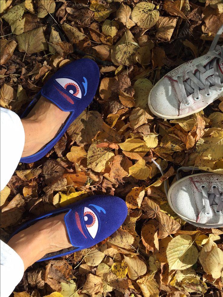 Last autumn days!