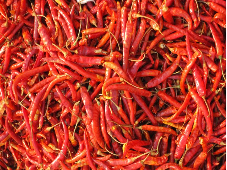 Piment  #red #rouge #gastronomie #piment