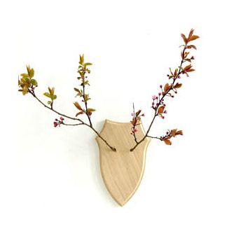 spring!Empty Wall, Deer Wall, Wall Hanging, Dear Deer, Deer Antlers, Dead Stuff, Antlers Art, Branchy Version, Diy Deer