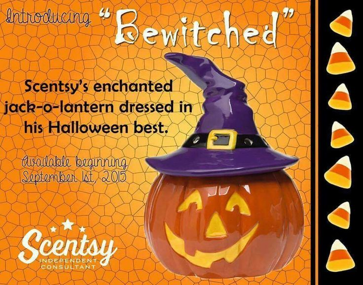 Bewitched Scentsy Warmer now 10% off.