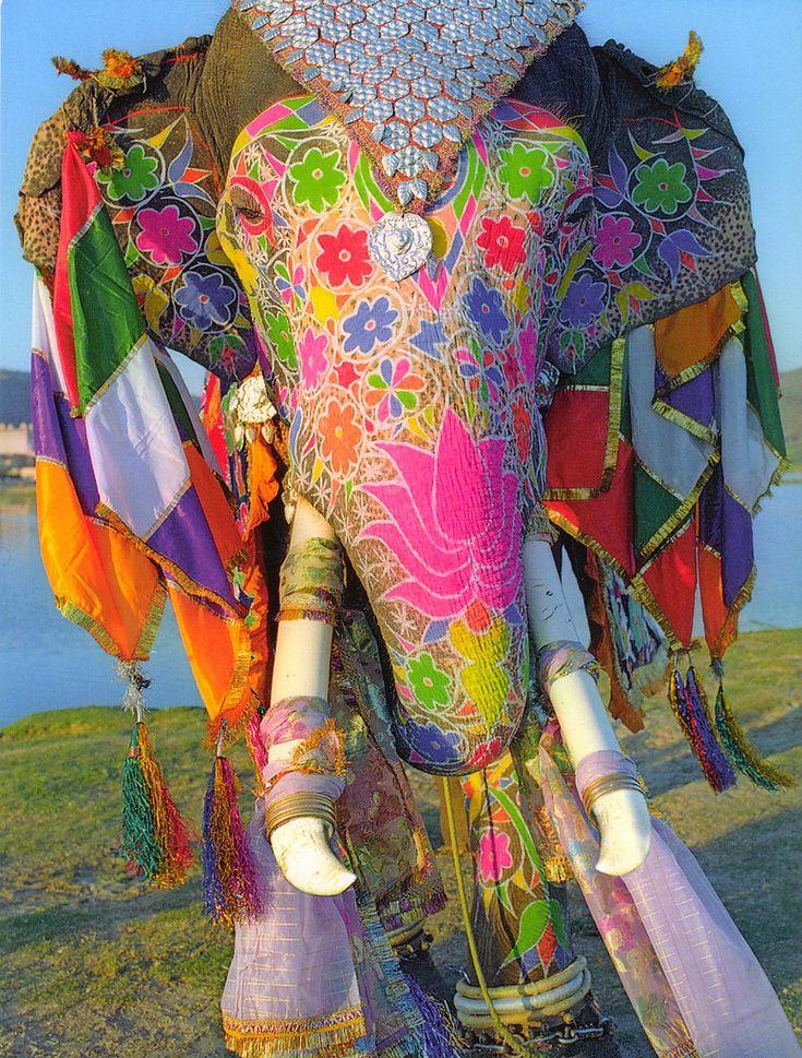 Jaipur, India ... elephant dressed for festivities.