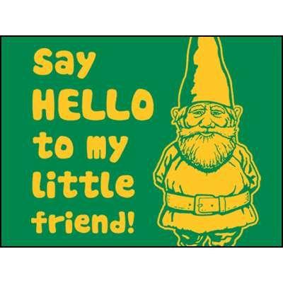 Hilarious Lawn Gnome | Gnome Funny
