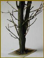 Archives - Trucs et astuces pour le maquettisme militaire et historique. - Confectionner un arbre miniature au 1/35ème. - DIORAMA MAQUETTE MILITAIRE MAQUETTES CHARS MAQUETTES AVIONS FIGURINES DIORAMAS DECORS PEINTURE
