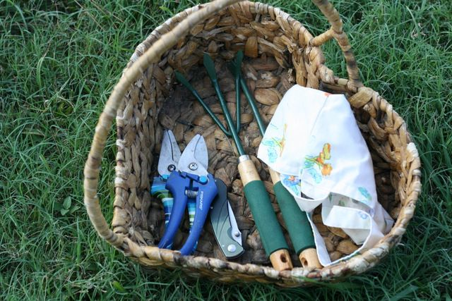 There are so many harvesting tools that can make the job so much easier. Fortunately, most of them are easy to find and don't cost much money at all. Here is my can't live without super frugal gardening tools list.
