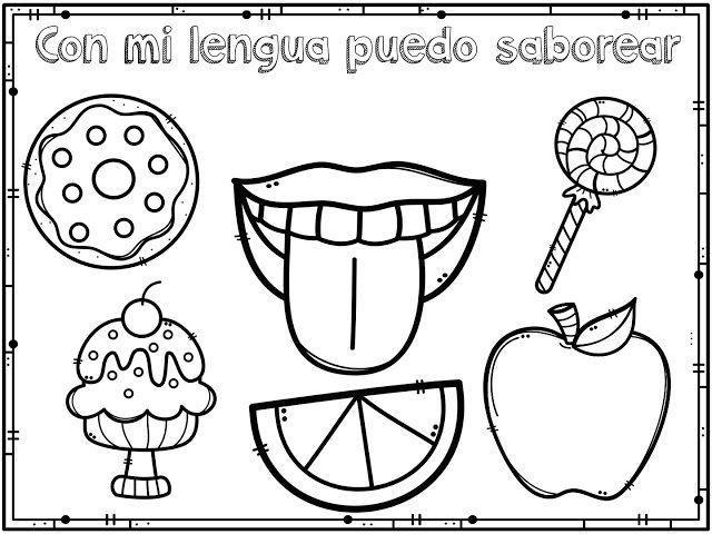 Material Educativo De Los Cinco Sentidos Para Imprimir Los Cinco Sentidos En Preescolar Los Sentidos Para Ninos Preescolar Los 5 Sentidos