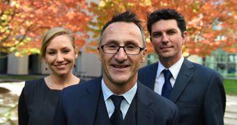 Australian Greens: Richard Di Natale elected new leader after Christine Milne resignation - ABC News (Australian Broadcasting Corporation)