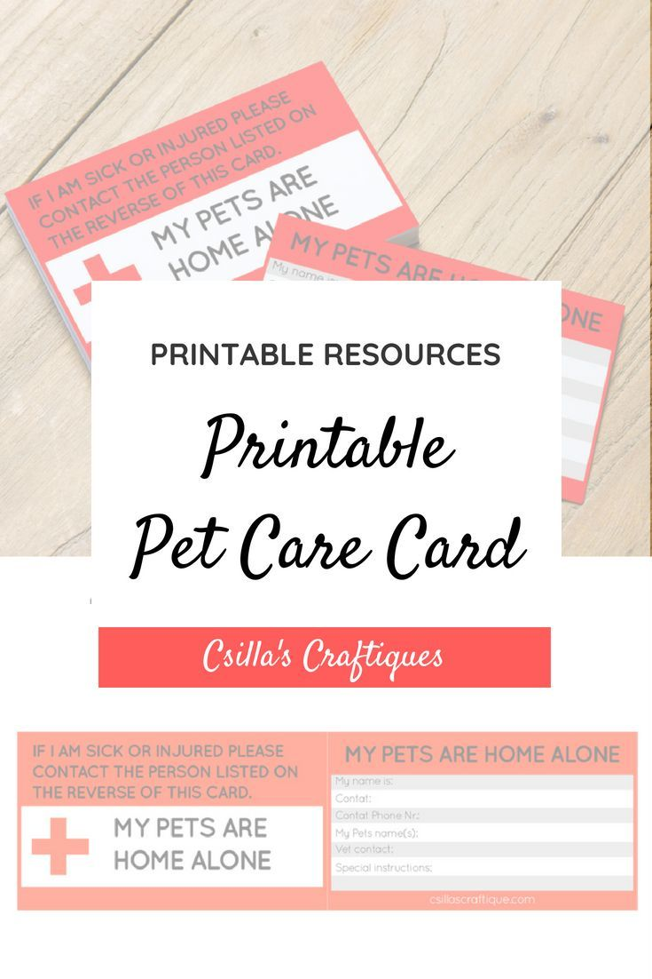 photograph relating to My Dog is Home Alone Card Printable identify Printable Puppy Treatment Card Canine Partner Presents Dog treatment, Presents
