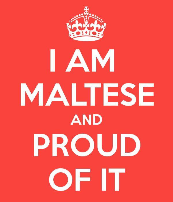 Image result for proud to be maltese