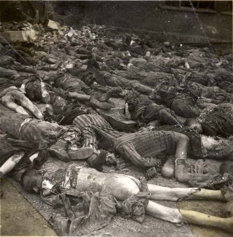 a history of the holocaust during the world war two The thriving life of european jewry prior to world war ii cannot be overlooked when embarking on a holocaust curriculum this article presents several aspects of prewar jewish life in europe, central to holocaust education.