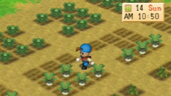 The PlayStation Classics: Harvest Moon Back to Nature