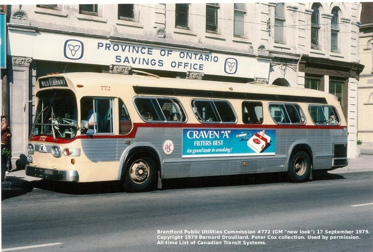 The old buses