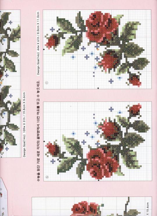 bebe 28 - ergoxeiro red roses