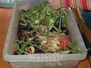 Como Fazer Compostagem em Casa - http://comosefaz.eu/como-fazer-compostagem-em-casa/