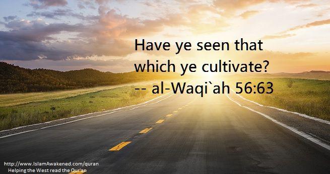 al-Waqi`ah 56:63 as rendered by M. M. Pickthall