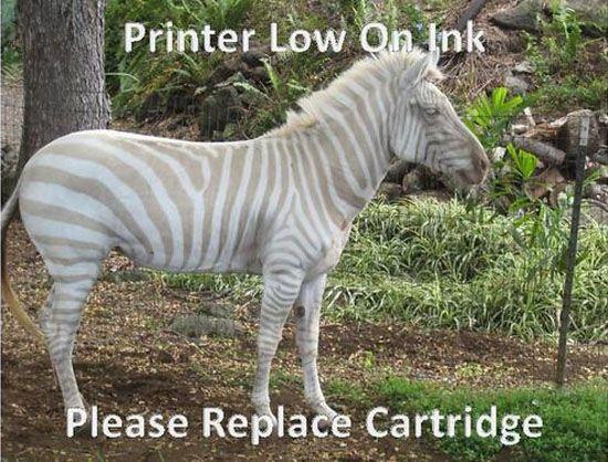 Printer Ink Low