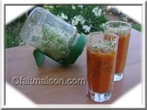 Consommer les graines germées, conseils et recettes