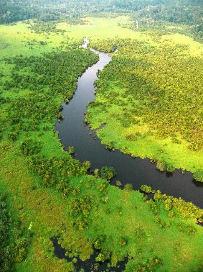 List of national parks of Gabon