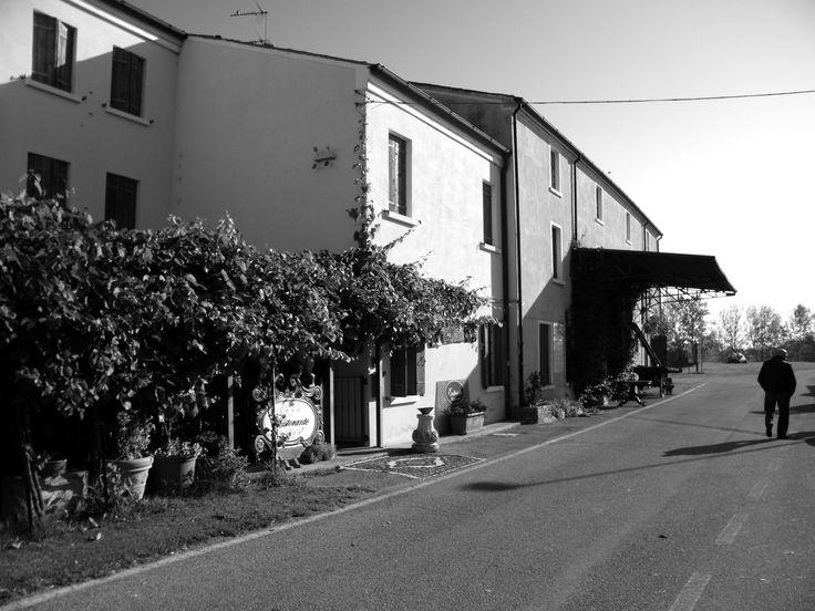 Polesine, Ottobre 2014 (3)