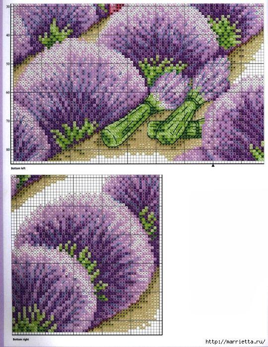 ЛАВАНДА. Схемы вышивки крестом (12) (540x700, 395Kb)