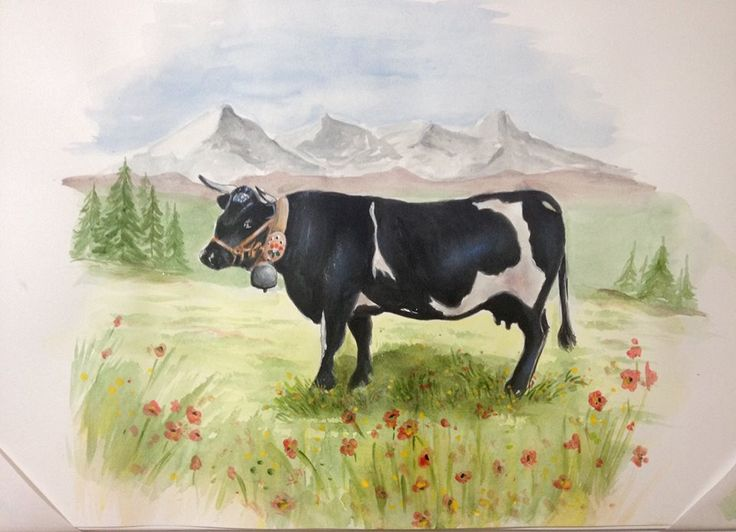 Mucca Cow