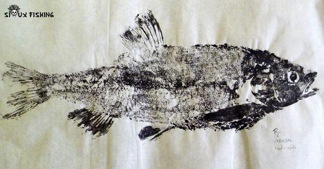 Gyotaku - Chevesne collection 1