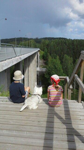 #Leppävirran silta #Huge_view #Summer #Westie #Sun #FInland