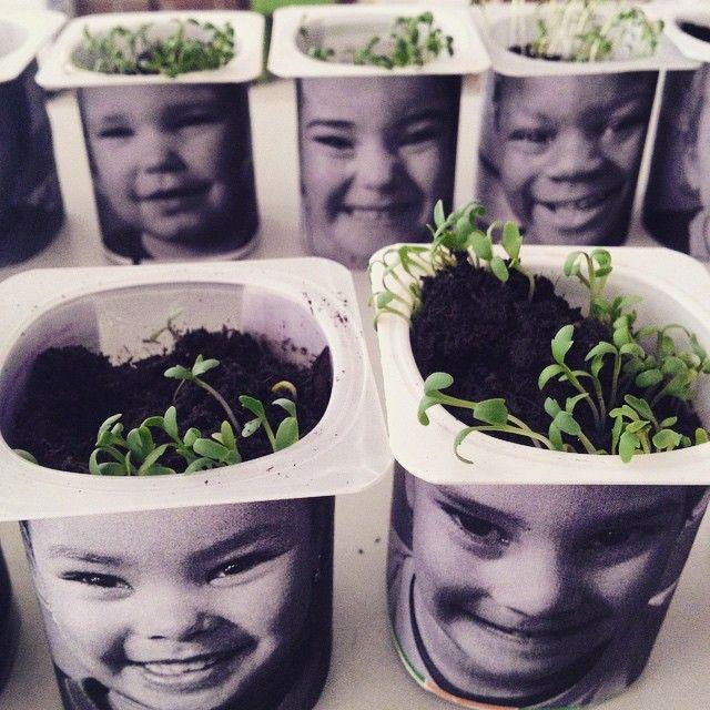 Foto's van de kleuters, zwart wit + tuinkers zaaien: haar.