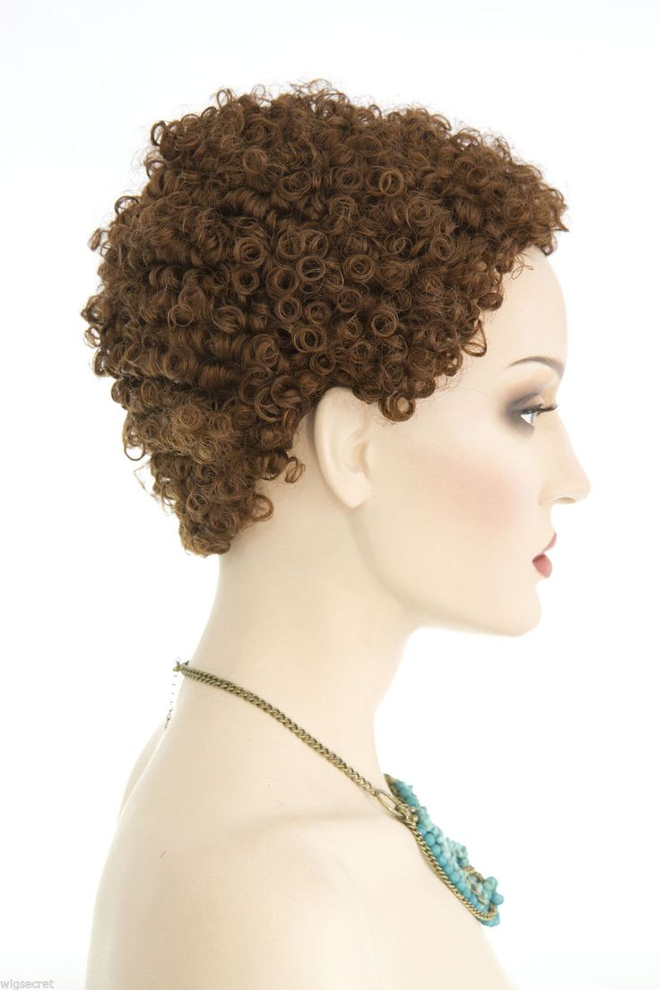Small Tight Ringlets Short Afro Style Brunette Red Curly Wigs Avail in 13 Colors…