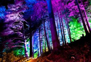 About The Enchanted Forest, Scotland's Best Sound & Light Show