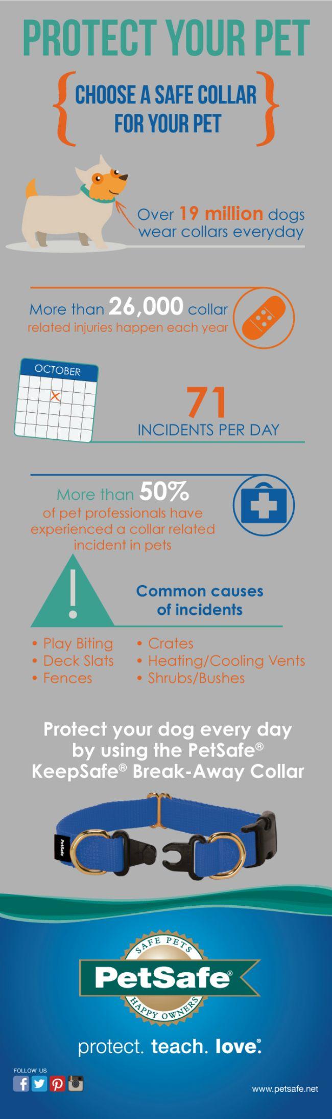 PetSafe_Collar Safety Awareness Week Infographic