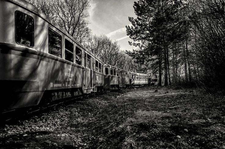 Childrens's Railway by Keszi László on 500px