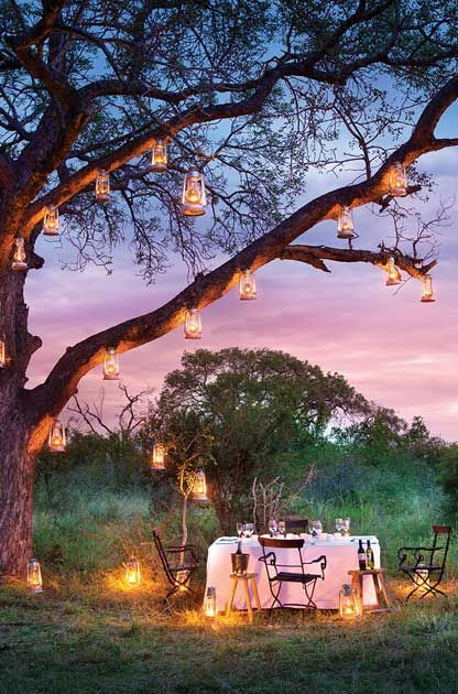 Private dining africa - Google Search