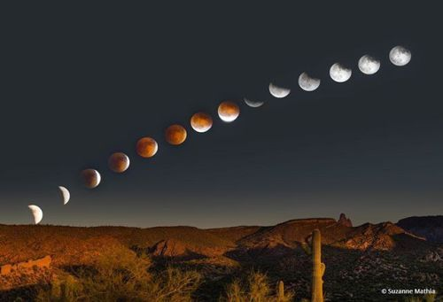 Photo by Suzanne Mathia. Congratulations to @smathiaphoto for winning the recent Solar And Lunar Eclipses Assignment with her image Desert Rising. She captured the Total Lunar Eclipse Blood Moon rising over the Arizona Desert on September 27 2015.  #OPAssignments #solareclipse #lunareclipse #totallunareclipse #bloodmoon #Arizona #desert #travel #adventure  via Outdoor Photographer on Instagram - #photographer #photography #photo #instapic #instagram #photofreak #photolover #nikon #canon…