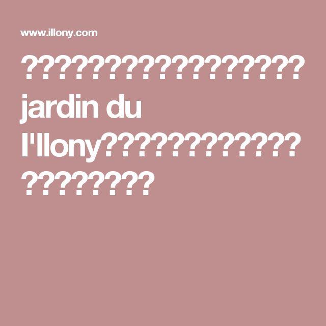 店舗情報 芦屋・南青山・パリの花屋 jardin du I'llony アイロニー ショップインフォメーション