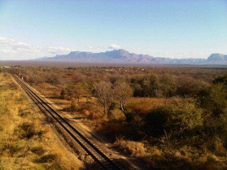 Rock Fig Safari Lodge is 70 kms South East of Hoedspruit in Limpopo.