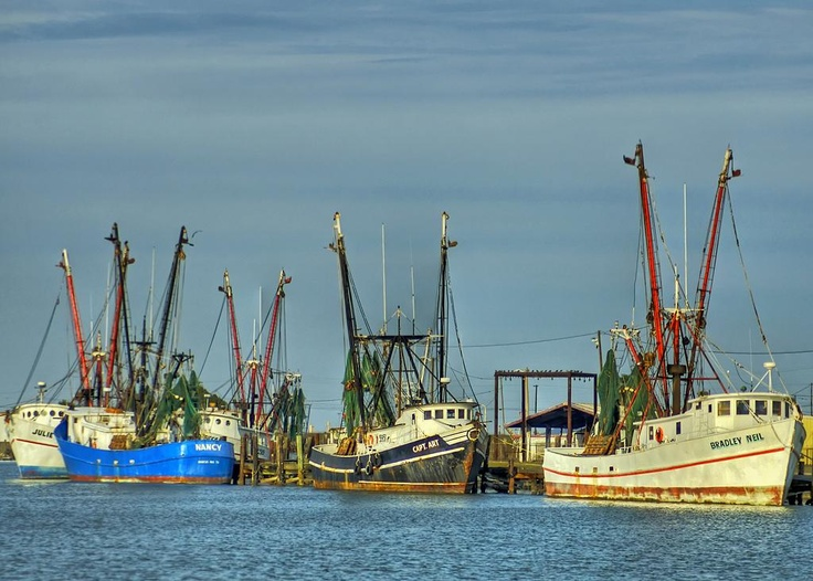 High Quality Shrimp Boats In Aransas Pass; Reprint As An Art Piece In Color Or Black