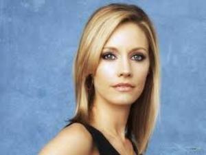 ABC's 'Secrets & Lies' Pilot Adds KaDee Strickland to the Cast