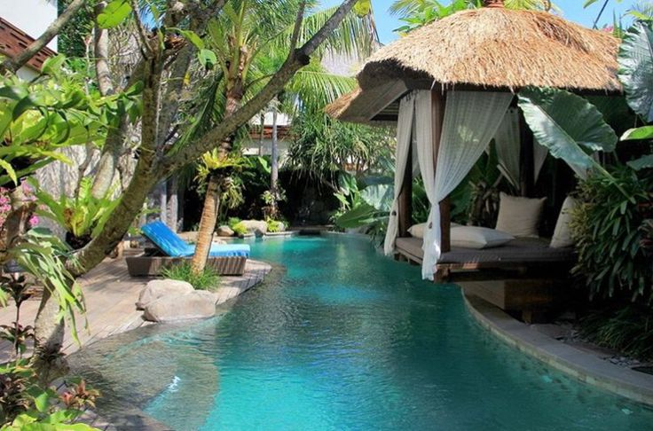 2732 best tropical pool images on pinterest live for Tropical pool gardens