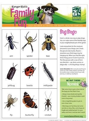 BUG BINGO!!Clouds Finder, Classroom, Bugs Bingo, Science And Nature, Homeschool Science, Camps, Kids, Nature Fun, Finder Wheels
