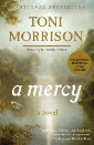 Toni Morrison: A Mercy.   Gripping story. Slavery.