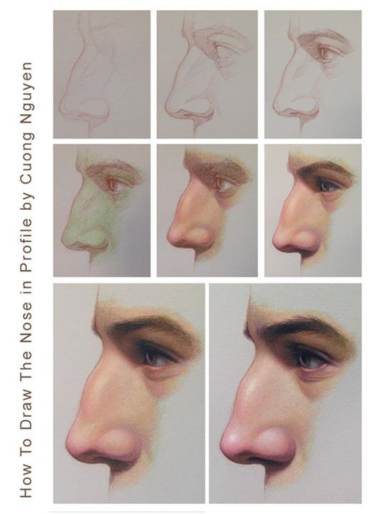 Nose in profile step by step by Cuong Nguyen https://www.facebook.com/icuong?fref=photo