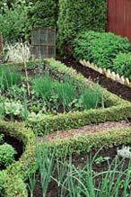 En bra planering från början sparar både tid och pengar. Det gäller både när man köpt en tomt för att bygga ett hus eller om man flyttar in i en gammal trädgård som behöver restaureras. Här får du trädgårdsarkitektens 10 bästa tips för drömträdgården...