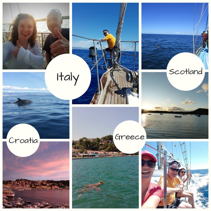Lovely photos from volunteers at our Whale & Dolphin projects around Europe this past summer! This could be you in 2018