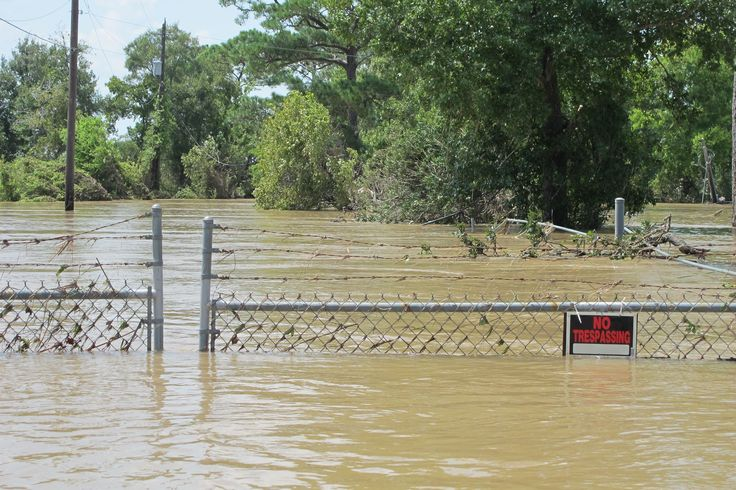 EPA attacks news agency, reporter for coverage of flooded Texas hazardous waste sites