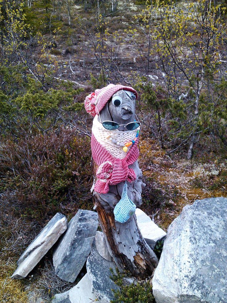 Fant denne på Venabygsfjellet, juni2012