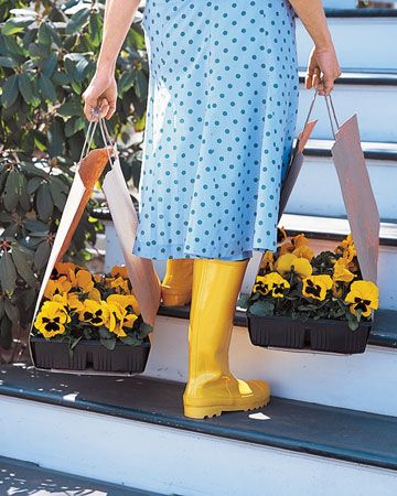 "MARTHA STEWART'S TOP 40 ""GOOD THINGS""  i chose to pin this one to remind me to do this when i pick up my spring & summer plants - keeps the car (and me) clean and saves trips."