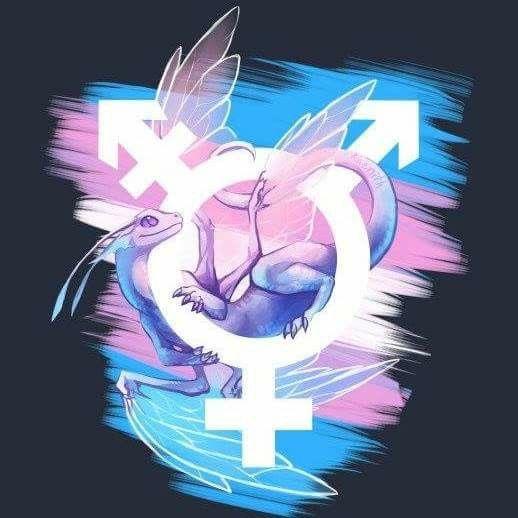 Transgender Tattoo Ideas, Transgender Ftm, Trans Flag, Trans Boys, Trans Pride Flag, Trans Art, Trans Gender, Trans Rights, Lgbt Love