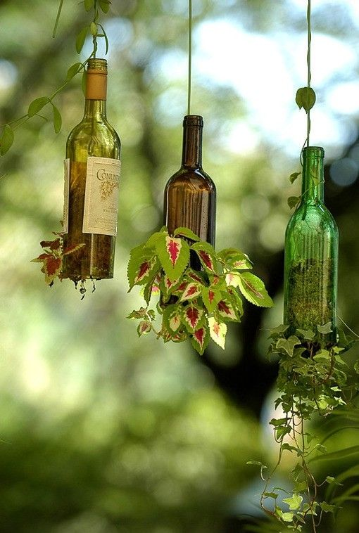 Hanging wine bottle plantersPlants Hangers, Ideas, Wine Bottle Garden, Hanging Plants, Old Bottle, Wine Bottles, Hanging Planters, Hanging Gardens, Winebottle