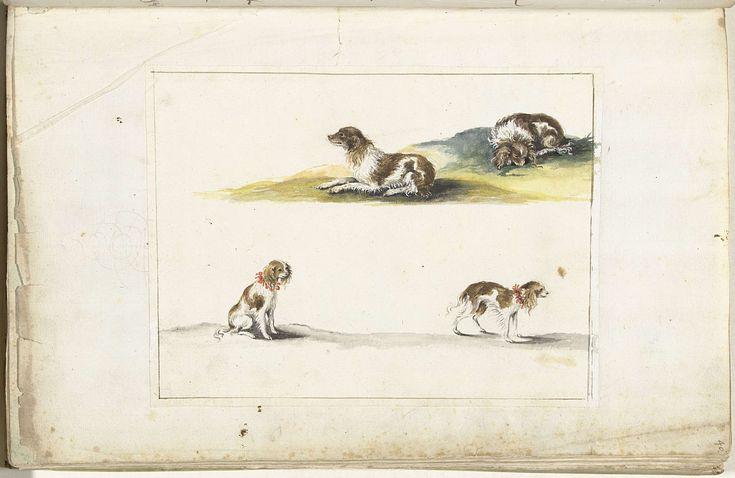 Gesina ter Borch | Vier studies van honden, Gesina ter Borch, c. 1660 - c. 1680 | Boven een liggende langharige hond, onder een zittende en lopende hond. De laatste is mogelijk Acteon die drie keer in het Familie-Plakboek is afgebeeld door Anna Conelia Moda.