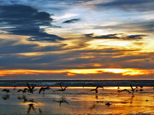 Foxton Beach at dusk, North Island, New Zealand